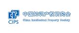 中国知识产权研究会