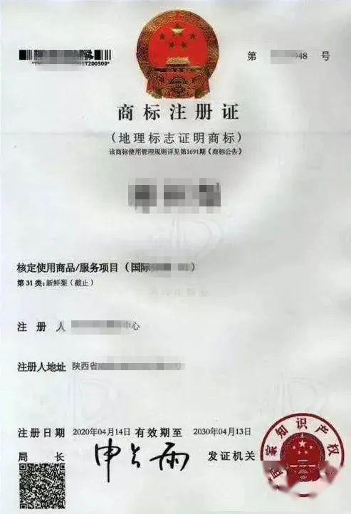 证明商标注册流程是怎样的?需要准备哪些材料?