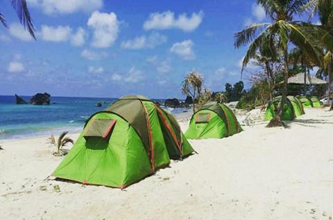 帐篷出租商标转让所在的类别属于第几类?