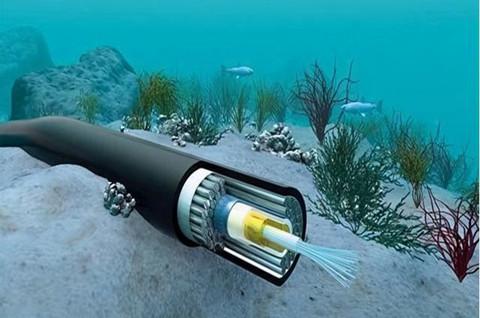 Facebook拟建设世界最长海底光缆,海底光缆商标类别应该怎么选?